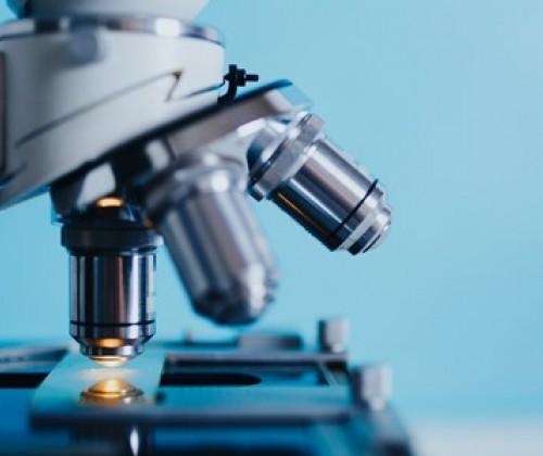 Mikrokunststoffe: RAC und SEAC einigen sich auf einen Vorschlag zur Beschränkung