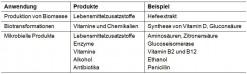 Verfahren und Produkte der industriellen Mikrobiologie