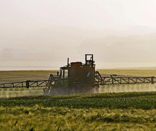 Glyphosat: Verlängerungsanträge werden überprüft