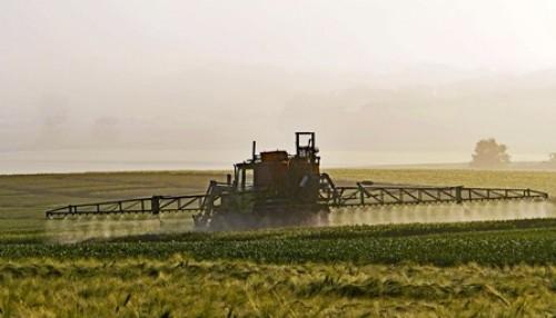 Pflanzenschutzmittel: Selten zu hohe Rückstandsgehalte