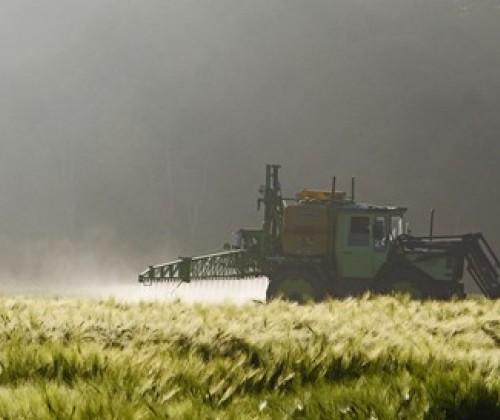 Pflanzenschutzmittel: Mehr Klarheit über Rückstände in Lebensmitteln