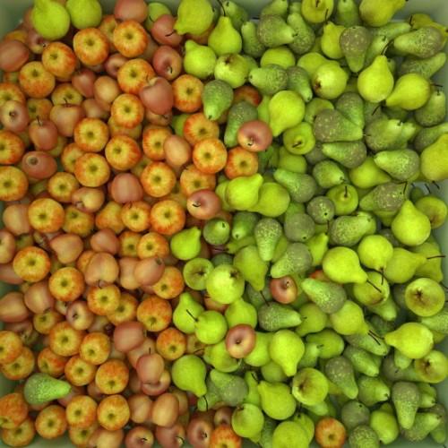 Patulin als Qualitätsindikator bei Apfel- und Birnenprodukten