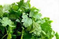 Rückstände von Pflanzenschutzmitteln in Lebensmitteln