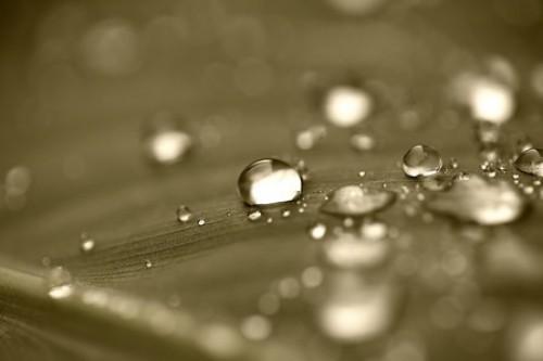 Nanotechnologie im Lebensmittelbereich