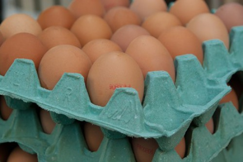 Pflanzenschutzmittel und organische Kontaminanten in Lebensmitteln
