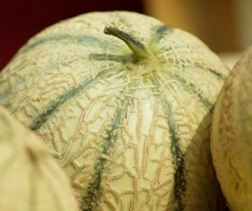 Pflanzenschutzmittelrückstände auf Melonen?