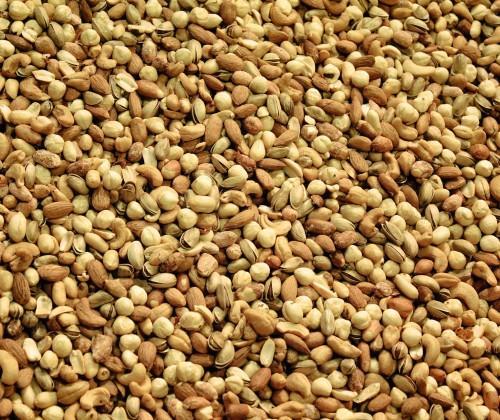 Können Nüsse vor Darmkrebs schützen?