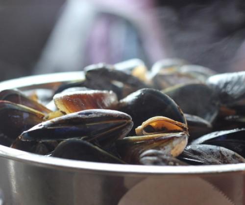 Austern und Miesmuscheln bei Stichproben betroffen