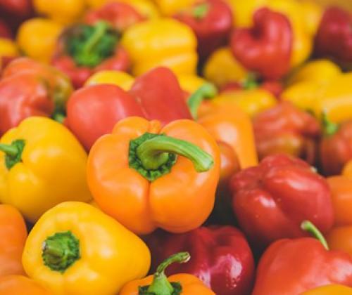 Verstärkte amtliche Kontrollen bei Einfuhr bestimmter Lebensmittel nicht tierischen Ursprungs
