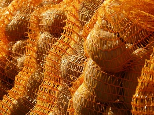 Kartoffeln auf Rückstände untersucht