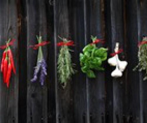 Gewürze und Kräuter: Einschätzung gesundheitlicher Risiken